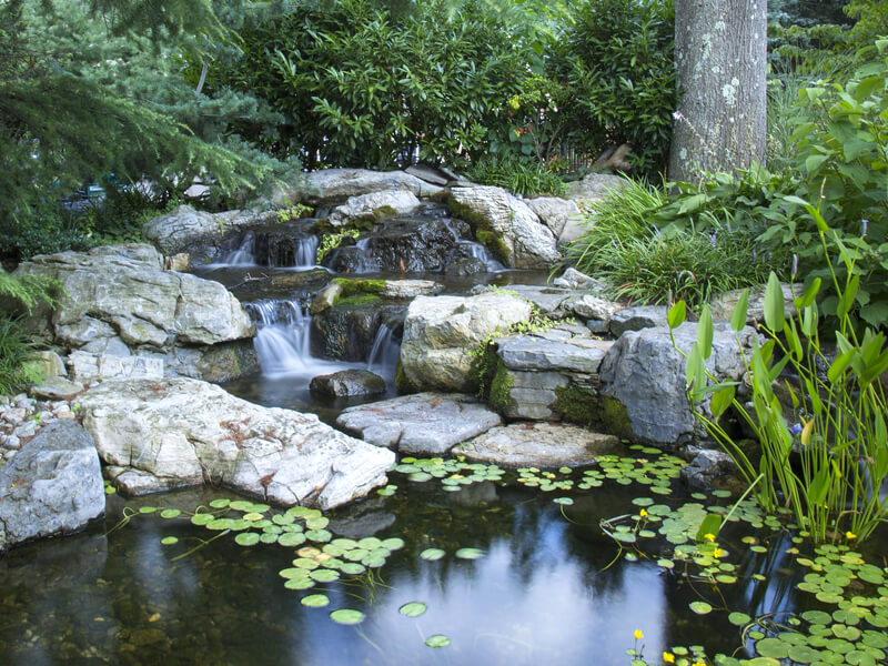 Im Garten Bachlauf anlegen mit oder ohne Teich