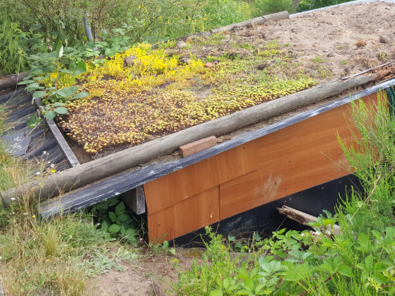 Grünes Dach anlegen - Anleitung