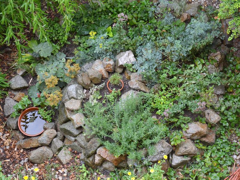 Trockenmauer bepflanzen mit Kräuter und Blumen