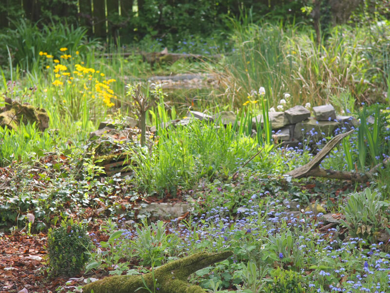 Naturgarten anlegen: Ideen und Beispiele