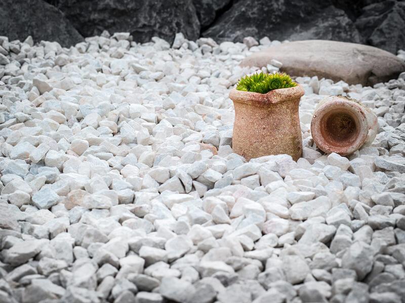 Naturnahe Bereiche schaffen statt Steinbeete anzulegen