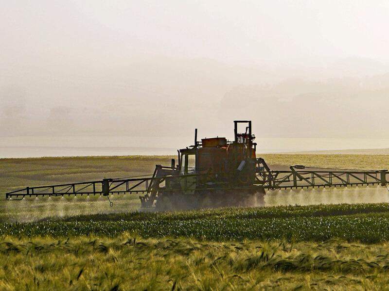 Pestizide gegen Schädlinge schädigen auch Nützlingeinsektensterben-bei
